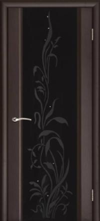 Межкомнатная дверь Regidoors Vetro Эксклюзив-2 Венге со стеклом